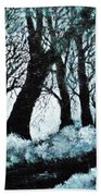 Forest Misty Dawn In Late Fall Hand Towel