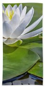 Frog And Lily Bath Towel