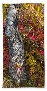 Gnarled Tree Trunk - Dezadeash Lake - Yukon Territory  Bath Towel