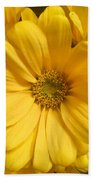 Golden Daisy Hand Towel