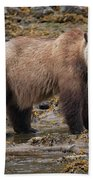 Grizzlies Hand Towel by Randy Hall