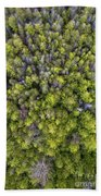 Grove Of Pines Aerial Hand Towel
