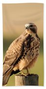 Hawk On The Edge Of A Field Bath Towel