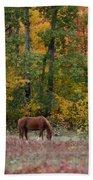 Horse In Fall Bath Towel