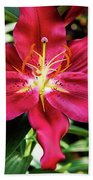 Hot Pink Day Lily Bath Towel