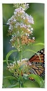 Hummingbird And Monarch Hand Towel
