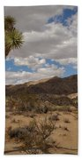 Joshua Tree National Park Bath Towel