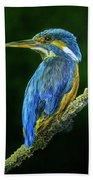 Kingfisher Bath Towel