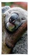 Koala Catching Zs Bath Towel