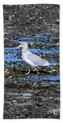 Land Bridge Gull Bath Towel by Patti Whitten