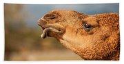 Large Beautiful Camel Hand Towel