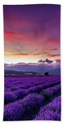 Lavender Season Bath Towel