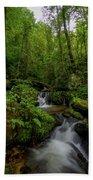 Lee Falls Cascades Bath Towel