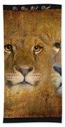 Lions No 02 Bath Towel