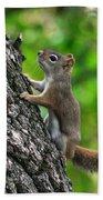 Lost Nuts Bath Towel