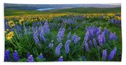 Lupines At Sunrise Hand Towel