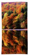 Mirrored Gallery Bath Towel