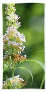 Monarch On White Butterfly Bush Hand Towel
