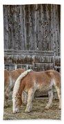 Horses By The Barn Sugarbush Farm Bath Towel