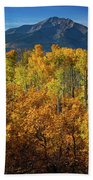 Mountains And Aspen Hand Towel by John De Bord