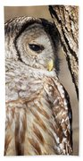 Nap Time Hand Towel by Randy Hall