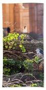 Night Heron At The Palace Bath Towel by Kate Brown