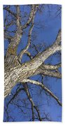 Old Oak Tree Bath Towel