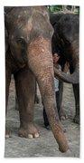 One Man, Two Elephants Hand Towel