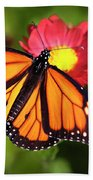 Orange Drift Monarch Butterfly Hand Towel by Christina Rollo