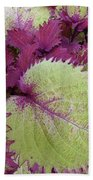 Patterns In Nature Bath Towel