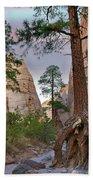 Ponderosa Pines In Slot Canyon Bath Towel
