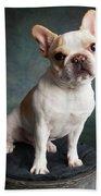 Portrait Of A French Bulldog Bath Towel