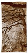 Portrait Of A Tree In Infrared Bath Towel