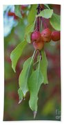 Pretty Cherries Hanging From Tree Bath Towel