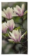 Pretty White And Pink Magnolia Hand Towel