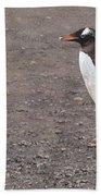 Quick Hurry - Gentoo Penguin By Alan M Hunt Bath Towel by Alan M Hunt
