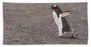 Quick Hurry - Gentoo Penguin By Alan M Hunt Hand Towel