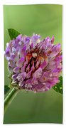 Red Clover Hand Towel