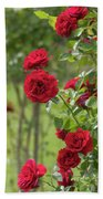 Red Roses Ludvig Vecera Bath Towel by Jenny Rainbow