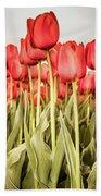 Red Tulip Field In Portrait Format. Bath Towel