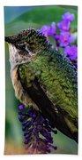 Rescued Ruby-throated Hummingbird Bath Towel