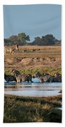 River-crossing Zebras Bath Towel