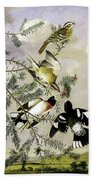 Rose-breasted Grosbeak Bath Towel