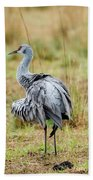 Ruffled Crane Hand Towel
