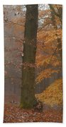 Rusty Autumn In Misty Woods Bath Towel by Jenny Rainbow