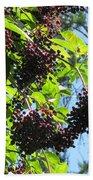 Sambucus Elderberry Sureau Bath Towel