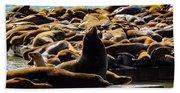 San Francisco's Pier 39 Walruses 1 Bath Towel