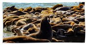 San Francisco's Pier 39 Walruses 2 Bath Towel
