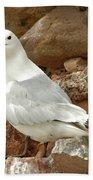 Seagull On Rock Bath Towel
