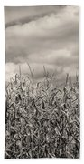Sepia Field Of Corn Hand Towel